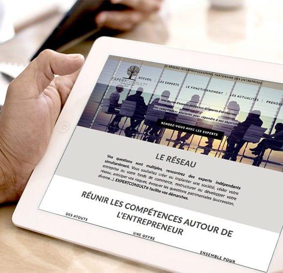 site web expert consult